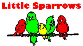 Little Sparrows